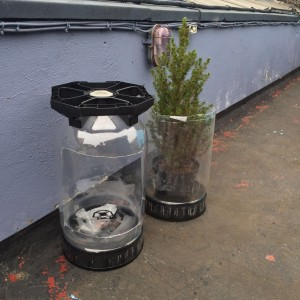 Key kegs reused for plants